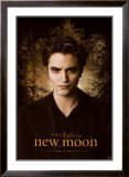 Twilight - New Moon Posters