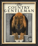 Bloodhound, c.1916 Framed Giclee Print by Charles Livingston Bull