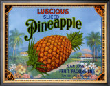 Luscious Pineapple Prints by Miles Graff