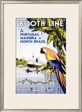 Booth Ocean Lines to Portugal Framed Giclee Print