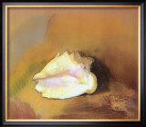 The Shell Photo by Odilon Redon