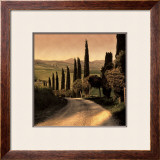 Country Lane, Tuscany Art by Elizabeth Carmel