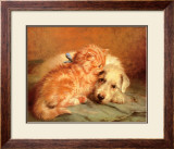 Kitten and Puppy Art by J Marshall