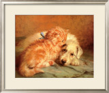 Kitten and Puppy Prints by J Marshall