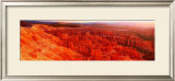 Bryce Canyon Poster by Alain Thomas