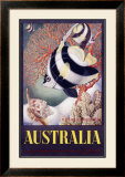 Australia Great Barrier Reef Framed Giclee Print by Mayo