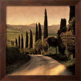 Country Lane, Tuscany Prints by Elizabeth Carmel
