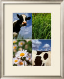 Pastoral Cow Prints by Panais & Morcime Dumoulin