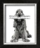 Dog News Poster by Jean-Michel Labat