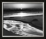 Birds on a Beach Posters by Ansel Adams