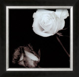 Two Roses Posters by Angelos Zimaras
