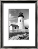 Pemaquid Point Light, Maine I Prints by Laura Denardo