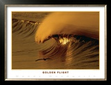 Golden Flight Prints by Woody Woodworth