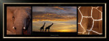Giraffes at Dusk Prints by Michel & Christine Denis-Huot