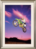 Motocross Air Posters