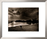 Horse Looking at the river, Normandie 99 Prints by Olivier Meriel