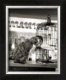 Child, Cat and Dove Prints by Robert Doisneau