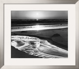 Birds on a Beach Art by Ansel Adams