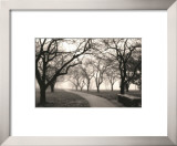 Foggy Morning Walk Prints by Laura Denardo