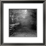 Autumn Walk Prints by Mary Ruppert