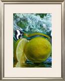 Limone Prints by Michael Meisen