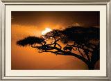 African Sky Prints