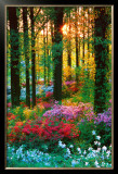 Flower Forest Posters