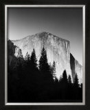 El Capitan in Trees Prints by Bradford Smith