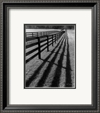 Fences and Shadows, Florida Print by Monte Nagler