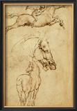 Sketch of a Horse Art by  Leonardo da Vinci
