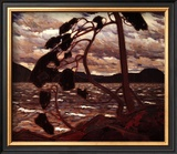 West Wind Posters by Tom Thomson