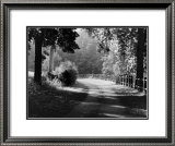 Path into the Woods, Burgundy Prints by Monte Nagler
