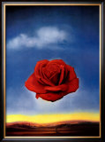 The Rose Posters by Salvador Dal&#237;