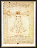 Vitruvian Man, c.1492 Prints by  Leonardo da Vinci