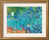 Irises, c.1889 Print by Vincent van Gogh