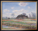 Tulip Fields at Sassenheim Print by Claude Monet
