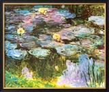 Violet Water Lilies Prints by Claude Monet