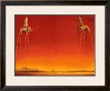 Os elefantes, cerca de 1948 Pôsters por Salvador Dalí