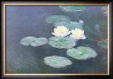Nympheas Effet du Soir Prints by Claude Monet
