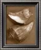 Sensual Shells I Art by Renee Stramel