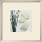 Straw Sea Glass Prints by Celia Pearson
