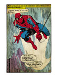 Marvel Comics Retro: The Amazing Spider-Man Comic Panel (aged) Lámina