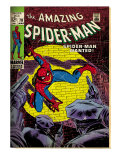Marvel Comics Retro: The Amazing Spider-Man Comic Book Cover 70, Wanted! (aged) Art