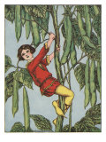 Illustration From Jack And The Beanstalk Of Jack Climbing The Stalk Posters by Elizabeth Colborne