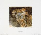 Loewenkopf Sammlerdruck von Eugene Delacroix