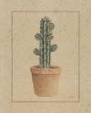 Cactus Prints by Laurence David