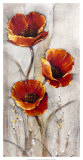 Red Poppies on Taupe I Prints by Tim O'toole