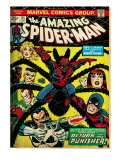 Marvel Comics Retro: The Amazing Spider-Man Comic Book Cover 135, Return of the Punisher! (aged) Prints
