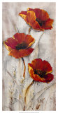 Red Poppies on Taupe II Posters by Tim O'toole