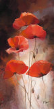 Poppy Bouquet II Print by Willem Haenraets